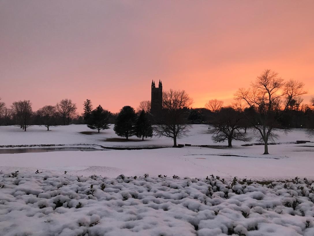 プリンストン大学の風景